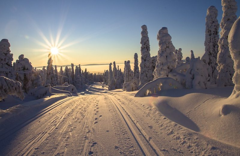 How to Warm Up for Cross-Country Skiing with Yoga