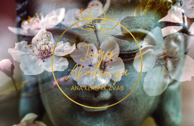 Meditacija za dvig vibracij (prek spleta)